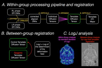 ISMRM 25th Annual Meeting Session Page