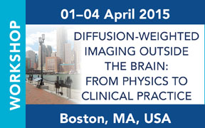 ISMRM Workshop on Diffusion-Weighted Imaging Outside the Brain: From Physics to Clinical Practice