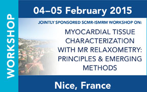 Jointly Sponsored SCMR-ISMRM Workshop on Myocardial Tissue Characterization with MR Relaxometry: Principles & Emerging Methods