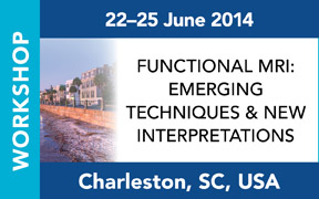 ISMRM Workshop on Functional MRI: Emerging Techniques & New Interpretations