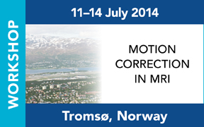 ISMRM Workshop on Motion Correction in MRI