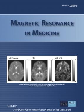 Lampinen_et_al-2017-Magnetic_Resonance_in_Medicine