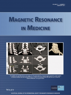 Mitsouras_et_al-2017-Magnetic_Resonance_in_Medicine